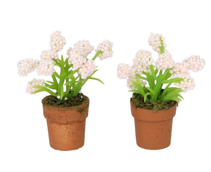 Macetas en miniatura tienda de casitas - Poda de hortensias en maceta ...