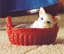 Tc1767 - Kitty in her basket