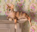 Tc1826 - Cat