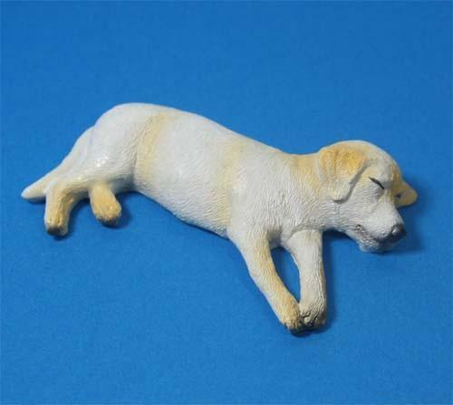 Tc1856 - Perro dormido