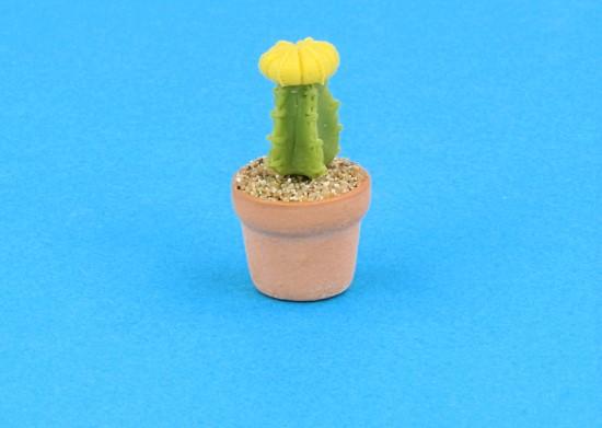 Sm4506 - Cactus