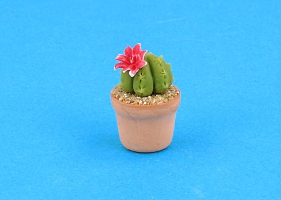 Sm4513 - Cactus