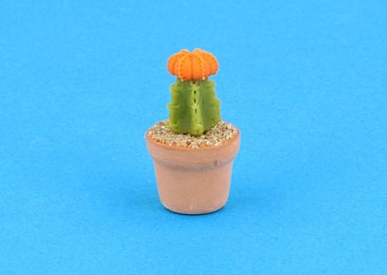 Sm4522 - Cactus