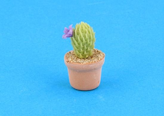 Sm4523 - Cactus