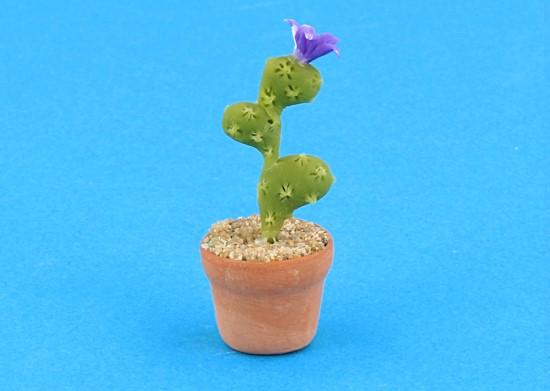 Sm4527 - Cactus