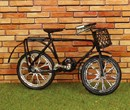 Tc2250 - Bicicleta infanfil