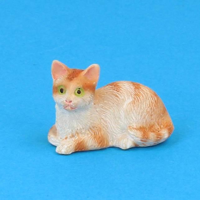 Tc2325 - Katze