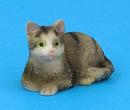 Tc2330 - Cat