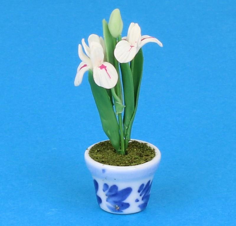 Sm4084 - Maceta de porcelana