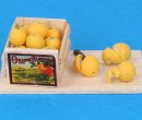 Tc2412 - Box of oranges with accessories