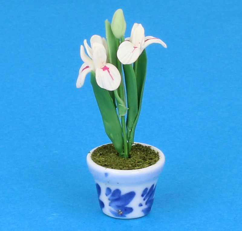 Sm4084 - Vaso di porcellana
