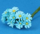 Tc0934 - Marguerites bleues