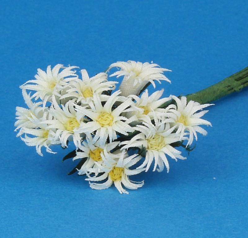Tc1016 - Flowers