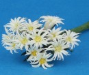 Tc1016 - Flores