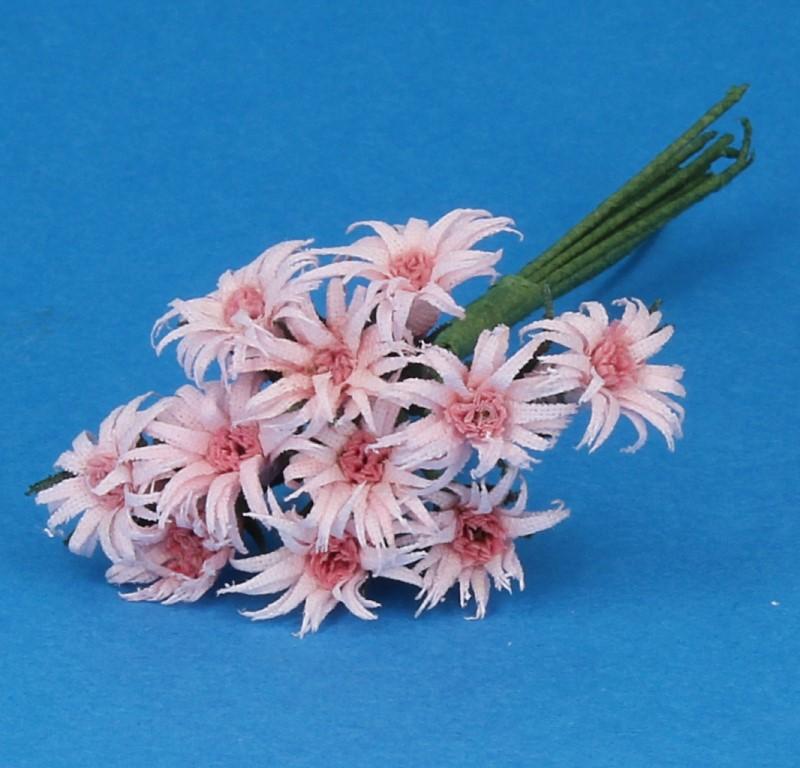 Tc1017 - Fleurs roses
