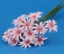 Tc1017 - Rosa Blumen
