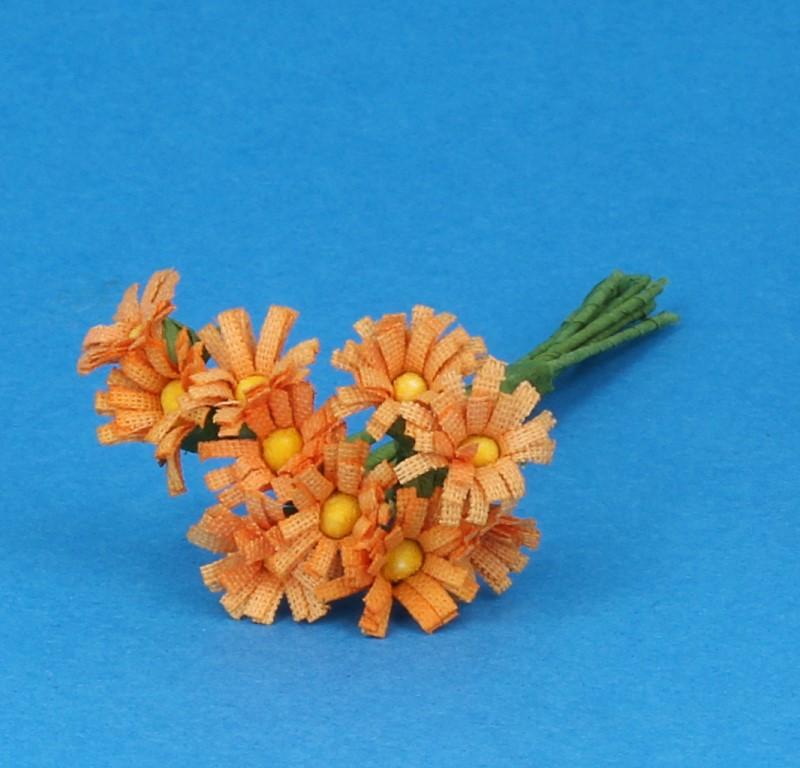 Tc1019 - Orange daisies