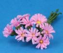 Tc1020 - Pink daisies
