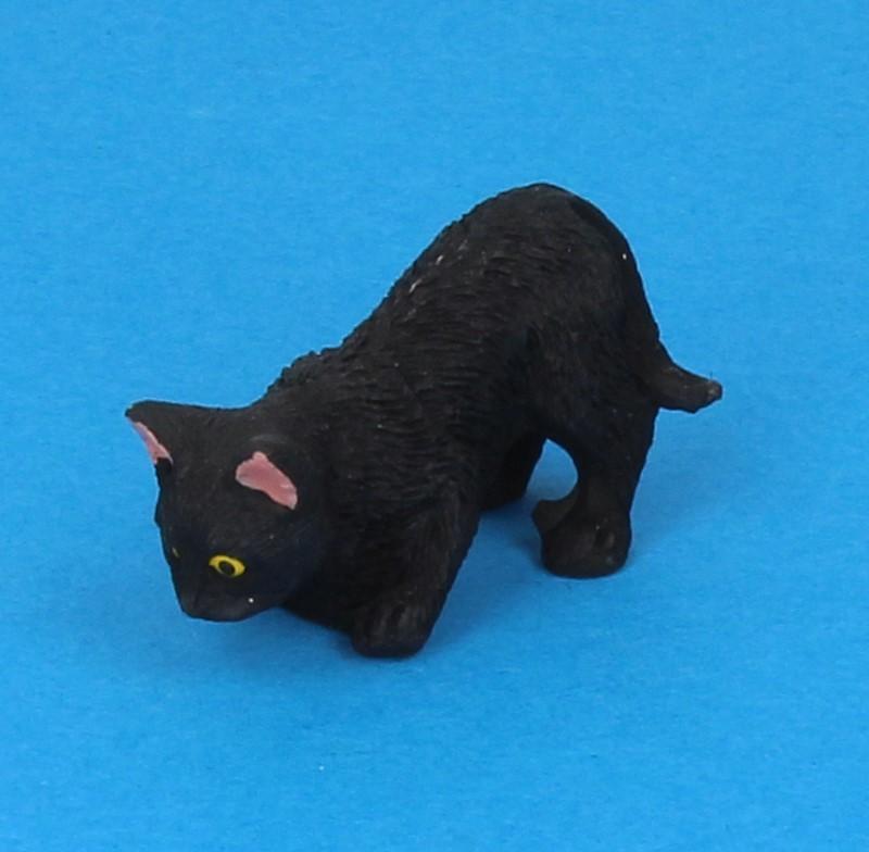 Tc2378 - Chat noir