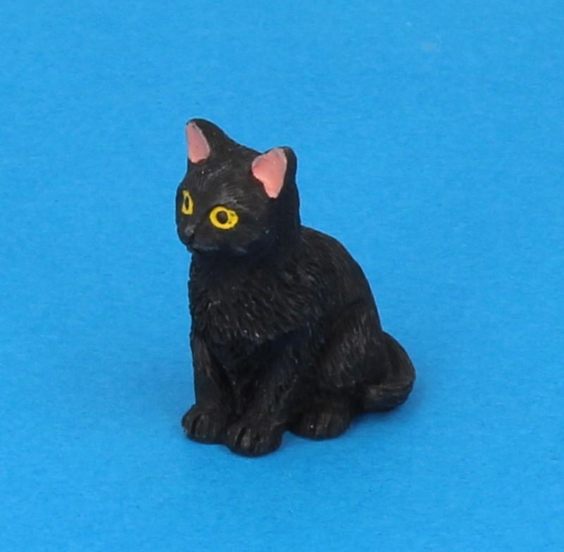 Tc2379 - Chat noir