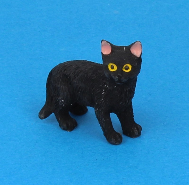Tc2382 - Black cat