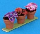 Tc2417 - Three flower pots