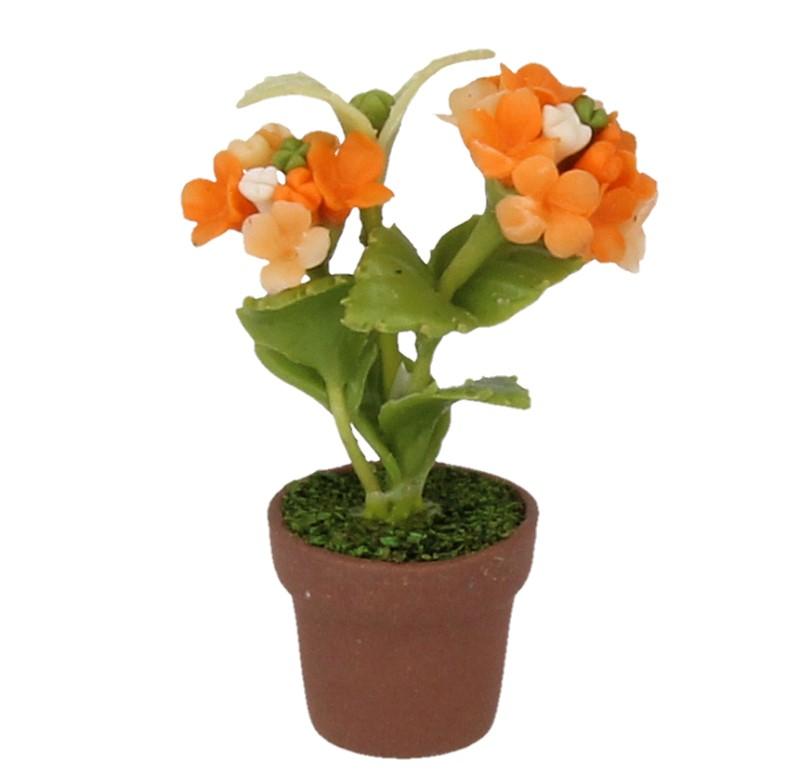 Sm4793 - Maceta con flores