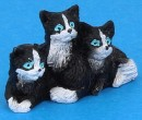 Tc0106 - Three cats