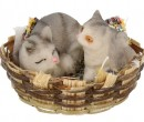 Tc0923 - Basket with cats
