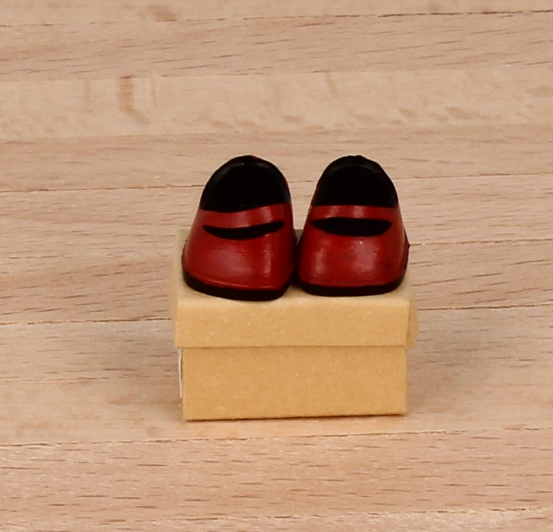 Tc1877 - Rote Schuhe