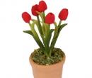 Sm4701 - Pot avec des fleurs