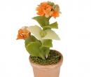 Sm4705 - Pot de fleurs avec des fleurs colorées