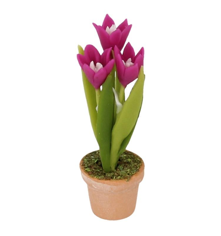 Sm4730 - Vaso con fiori lilla