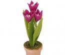 Sm4730 - Pot avec fleurs lilas