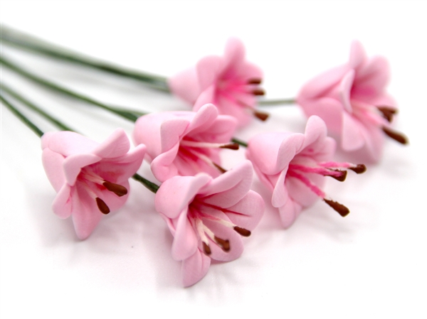 Tc0063 - Flores rosas
