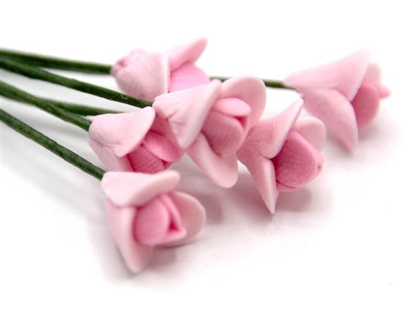Tc0140 - fleurs roses