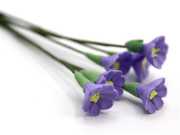 Tc0141 - Purple flowers