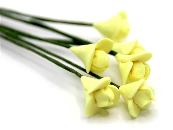 Tc0148 - Flores amarillas