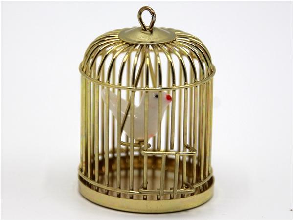 Tc1643 - Cage