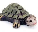 Tc2360 - Tortoise