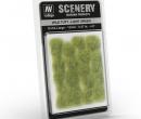 Tc0317 - Green grass