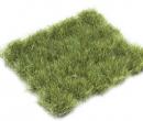 Dr30428 - Dschungelgrün Gras
