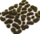 Dr30405 - Rasen Sumpfgrün