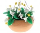 Tc2553 - Flowerpot