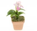 Sm4017 - Pot à orchidée