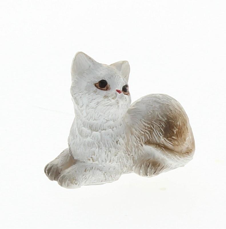 Tc1031 - Chat blanc couché