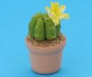 Sm4505 - Cactus
