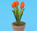 Sm4708 - Flower pot with flowers