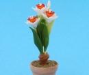 Sm4712 - Flower pot