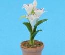 Sm4732 - Flower pot